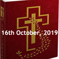 Catholic Daily Readings for 16th October 2019, Wednesday of the Twenty-eighth Week in Ordinary Time Year C - Daily Homily