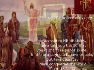 You Will Have Trouble But Take Courage, I Have Conquered The World - John 16:29-33 - Bible Verse of the Day