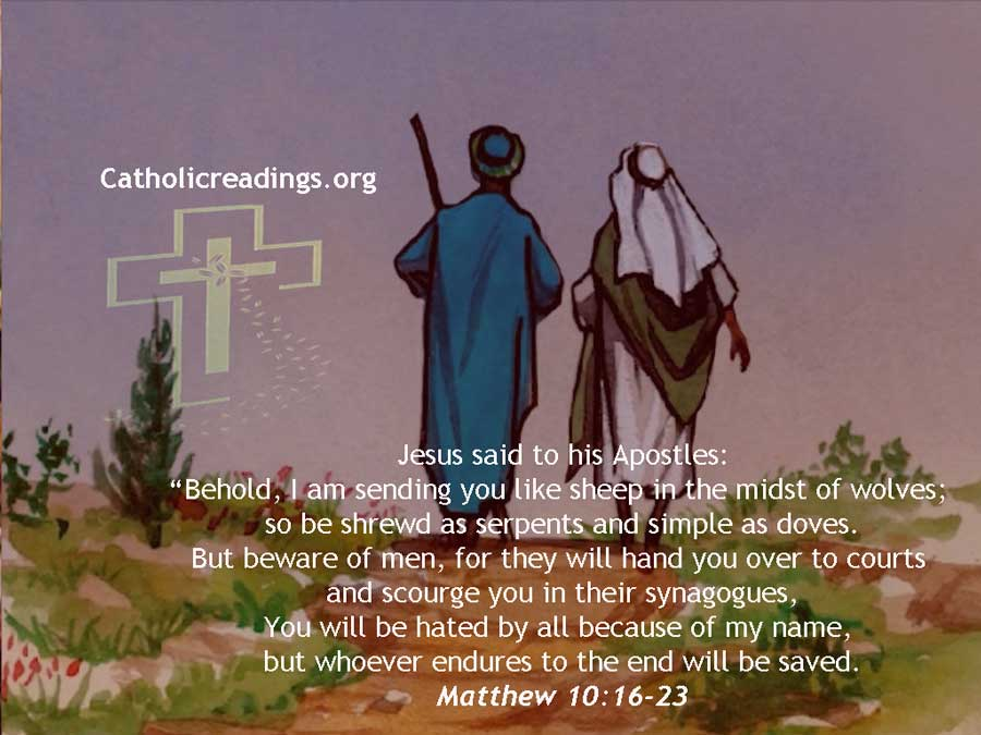I Am Sending You Like Sheep in the Midst of Wolves - Bible Verse of the Day