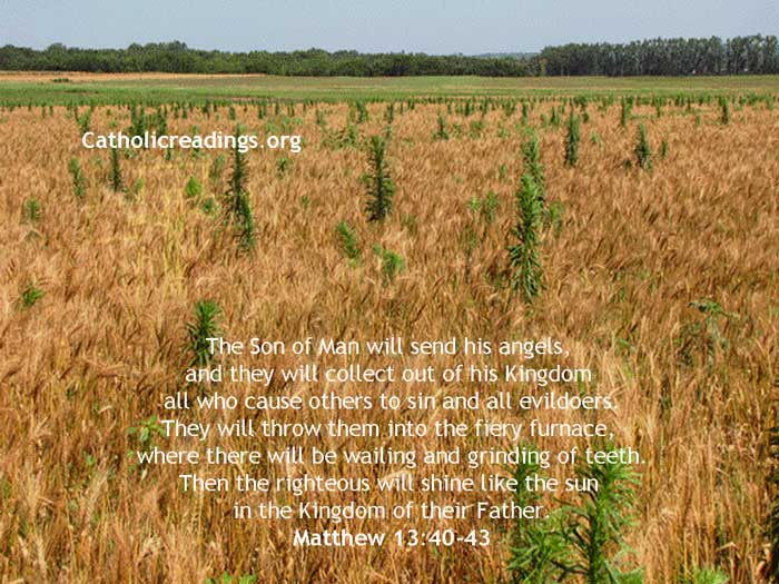 The Righteous will Shine Like the Sun in the Kingdom of their Father - Bible Verse of the Day - Matthew 13:40-43