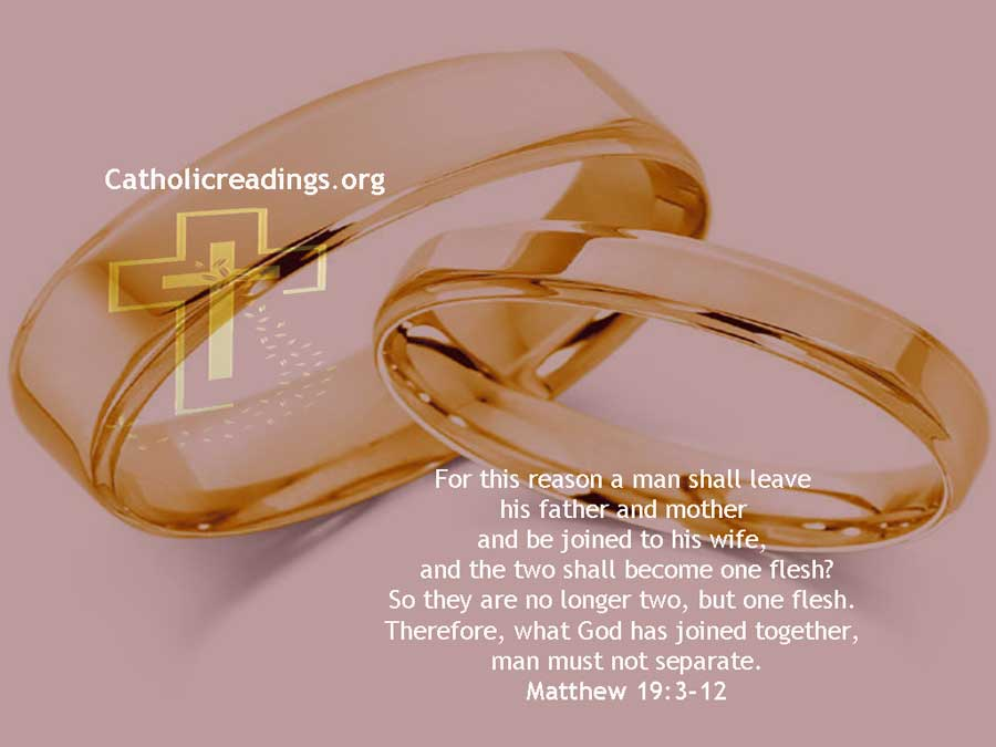 What God Has Joined Together, Man Must Not Separate - Matthew 19:3-12, Mark 10:1-12 - Bible Verse of the Day