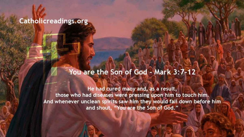 You are the Son of God - Mark 3:7-12 - Bible Verse of the Day
