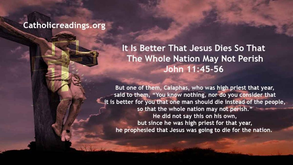 It Is Better That Jesus Dies So That The Whole Nation May Not Perish - John 11:45-56 - Bible Verse of the Day
