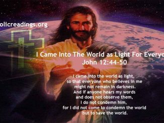 I Came Into The World as Light For Everyone - John 12:44-50 - Bible Verse of the Day