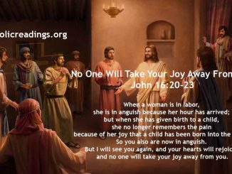 No One Will Take Your Joy Away From You - John 16:20-23 - Bible Verse of the Day